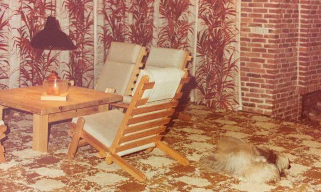 1970ernes genkomst